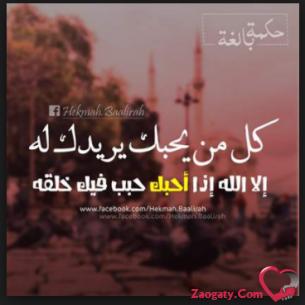 mohamed567377