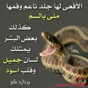 SALEM0597816155