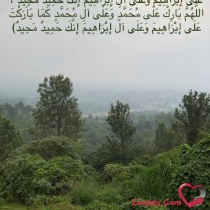 Abuali12345678